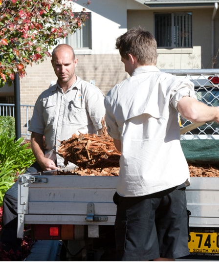 Two male IRT workers standing by a ute shovelling bark into a garden