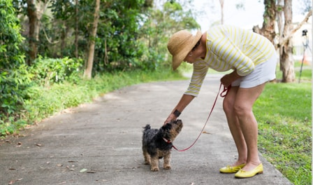 A woman bending over to pat her small dog on a footpath