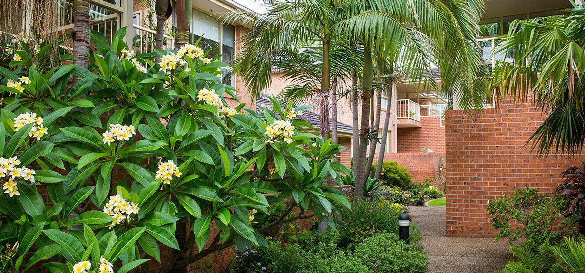 IRT Edwina - Retirement Village Gardens 2