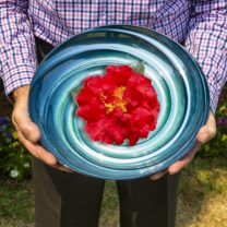 Bowl and camellia